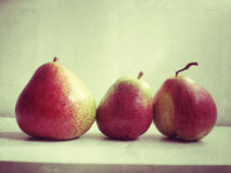 Three Forelle pears Stock Photos