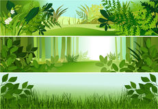 Three forest banners Royalty Free Stock Image