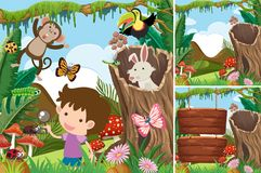 Three forest scenes with boy and animals Royalty Free Stock Image