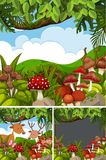 Three forest scenes with mushrooms. Illustration Royalty Free Stock Image
