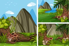 Three forest scenes with trees and mushrooms. Illustration Royalty Free Stock Photos