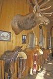 Three Forks Custom Saddlery, MT Stock Images