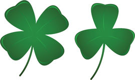 Three and Four Leaf Clovers. Three leaf and four leaf clover 3D illustrations Royalty Free Stock Image