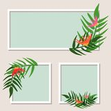 Three frames with green leaves and flowers stock illustration