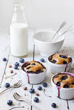 Three french clafoutis with blueberries and cherries on ceramic ramekins on rustic white vintage background with milk Stock Images