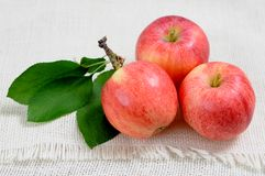 Three fresh  apples Royalty Free Stock Photo