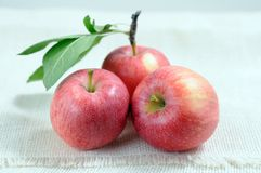Three fresh apples Royalty Free Stock Photography
