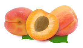 Three fresh apricots and leaves Royalty Free Stock Image