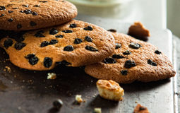 Three fresh baked cookies with raisin and chocolate on the pan Royalty Free Stock Photos