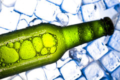 Three fresh beer with ice. Beer collection, glass in studio Royalty Free Stock Images