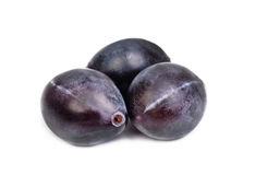 Three fresh blue plums on the white Stock Photography