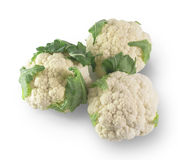 Three fresh cabbages on a white background Stock Photography