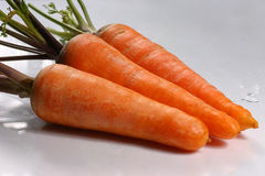 Three fresh carrots. Close up view of fresh carrots on the white background Stock Images