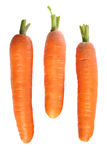 Three fresh carrots Royalty Free Stock Photo