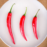 Three fresh chili peppers on plate Royalty Free Stock Image