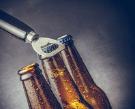 Three fresh cold beer ale bottles with drops and stopper open with bottle opener. On dark background Stock Image