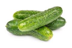 Three fresh cucumber Royalty Free Stock Photos