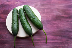 Three fresh cucumbers. Lying on a round board stock image