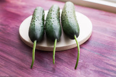 Three fresh cucumbers lying on windowsill. Three fresh cucumbers lying on a windowsill Stock Image