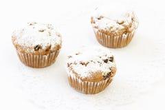 Three fresh cupcake with raisins Royalty Free Stock Photos
