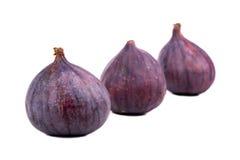 Three fresh figs stock photo