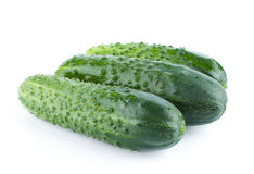 Three fresh and green cucumbers Royalty Free Stock Photos