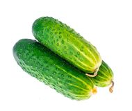 Three fresh green cucumbers isolated on white background. Studio Photo Royalty Free Stock Photography