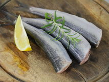 Three fresh herrings Stock Image
