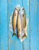 Three fresh mackerels. Royalty Free Stock Photo