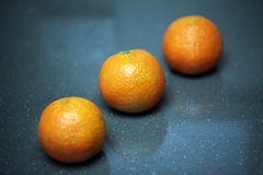 Three fresh Mandarin oranges royalty free stock photo