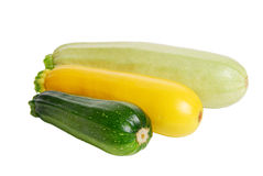 Three fresh marrow squash on w Royalty Free Stock Image