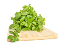 Three fresh mint leaves isolated on white background. Studio mac Stock Images