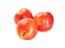 Three fresh nectarines Stock Images