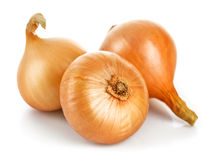 Three fresh onions harvest vegetable. White Royalty Free Stock Image