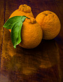 Oranges on an old Table. Three fresh oranges on an old dark borwn wooden table Royalty Free Stock Photography