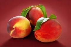 Three fresh peaches Royalty Free Stock Photo
