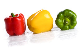Three fresh peppers under pouring water isolated Stock Image