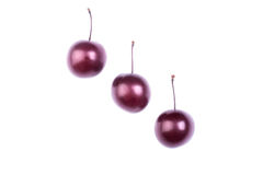 Three fresh and purple plum, isolated on a white background. Passion fruit. Close-up of nutritious berries full of vitamins. Close-up of three red cherry plums Royalty Free Stock Photography