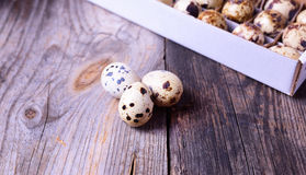 Three fresh quail eggs on a gray wooden surface Stock Photos