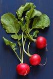 Three fresh radishes. Royalty Free Stock Photo