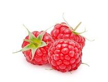 Three fresh raspberries Royalty Free Stock Images