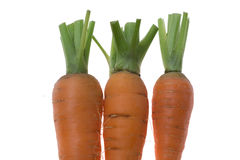 Three fresh raw carrots on the white background. Three fresh raw carrots isolated on the white background. Close up Royalty Free Stock Images