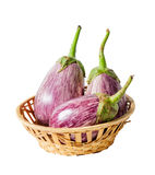 Three fresh raw striped eggplants  isolated on white. Background Royalty Free Stock Images
