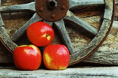 Three fresh red apples against a wooden background Stock Photos