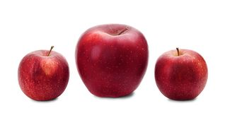Three fresh red apples in a row royalty free stock images
