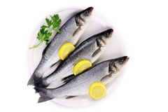 Three fresh seabass with lemon on plate. Royalty Free Stock Images