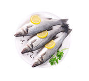 Three fresh seabass with lemon on plate. Royalty Free Stock Photography