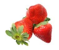 Three fresh strawberry Stock Image