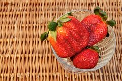 Three Fresh Summer Organic Strawberries Still Life,  Royalty Free Stock Image
