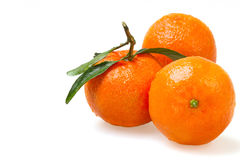 Three fresh tangerine Royalty Free Stock Photo